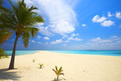 Flüge - Von, nach und ab Bahamas günstig buchen