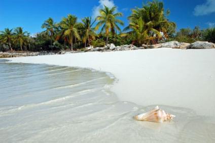 Flüge - Von, nach und ab Dominikanische Republik günstig buchen