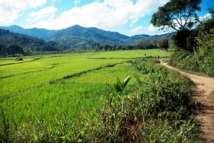 Flüge - Von, nach und ab Madagaskar günstig buchen