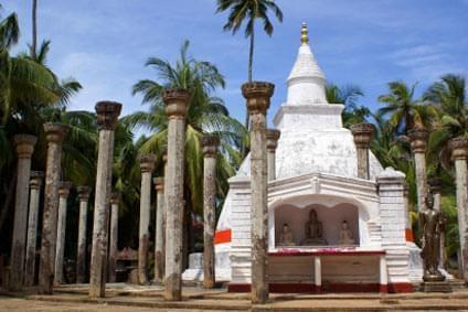 Flüge - Von, nach und ab Sri Lanka günstig buchen