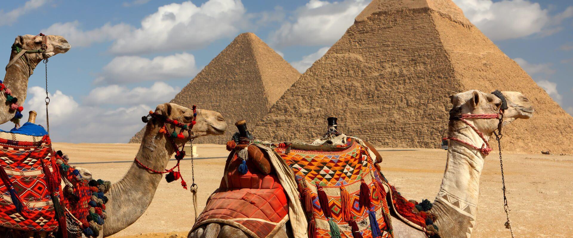 Bild Kairo