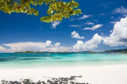 Bild Beef Island