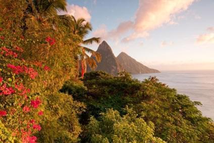 Flüge - Von, nach und ab St. Lucia günstig buchen